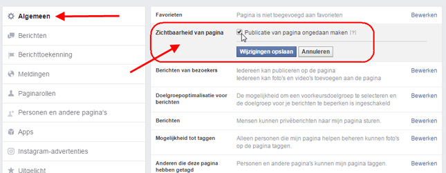 pagina offline facebook